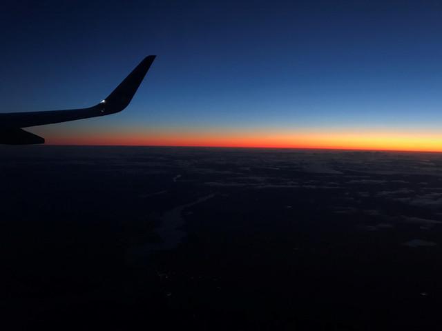 Sharklet-in-Sunset.jpg