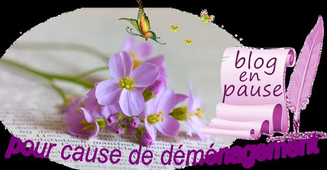 blog-pause-d-m-nagement.png