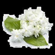 epoch-ying-and-yang-mask-ingredient-jasmin-sambac-transparent-image