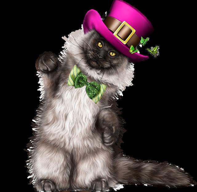 Leprechaun-Cat-With-Beer-49.png