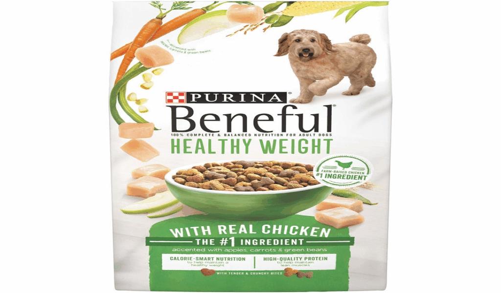 Pet Dog Family Health