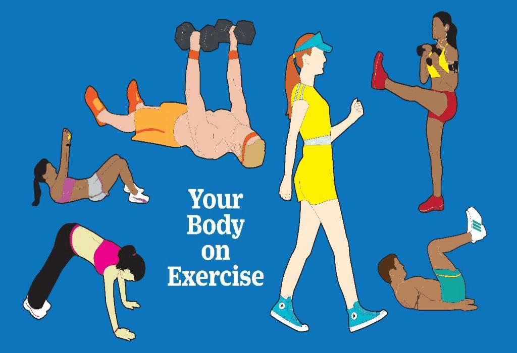 Yoga,Weight Lifting,Stretching,Jogging,Aerobics,Martial Arts