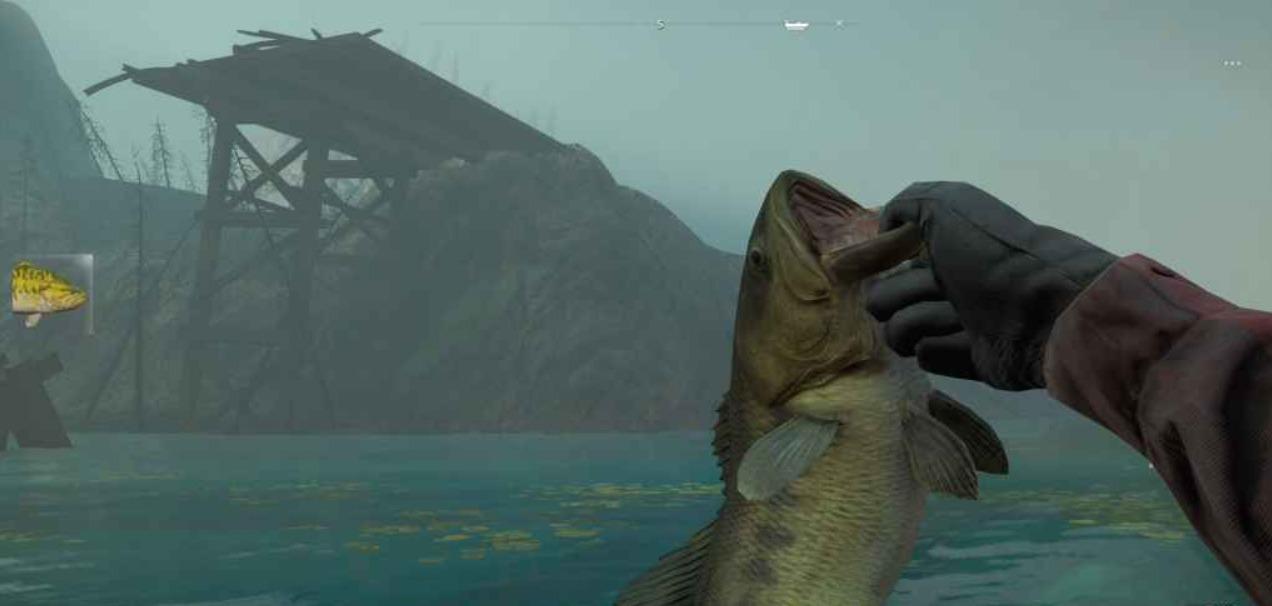 Far Cry New Dawn - как ловить рыбу? Расположение рыбы