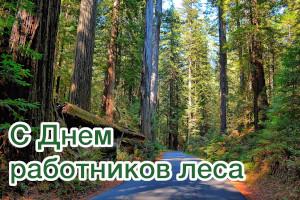Уважаемые работники и ветераны лесного хозяйства Шилкинского района! Поздравляем вас с профессиональным праздником!