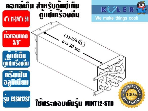 ESSM12-ST-2-copy