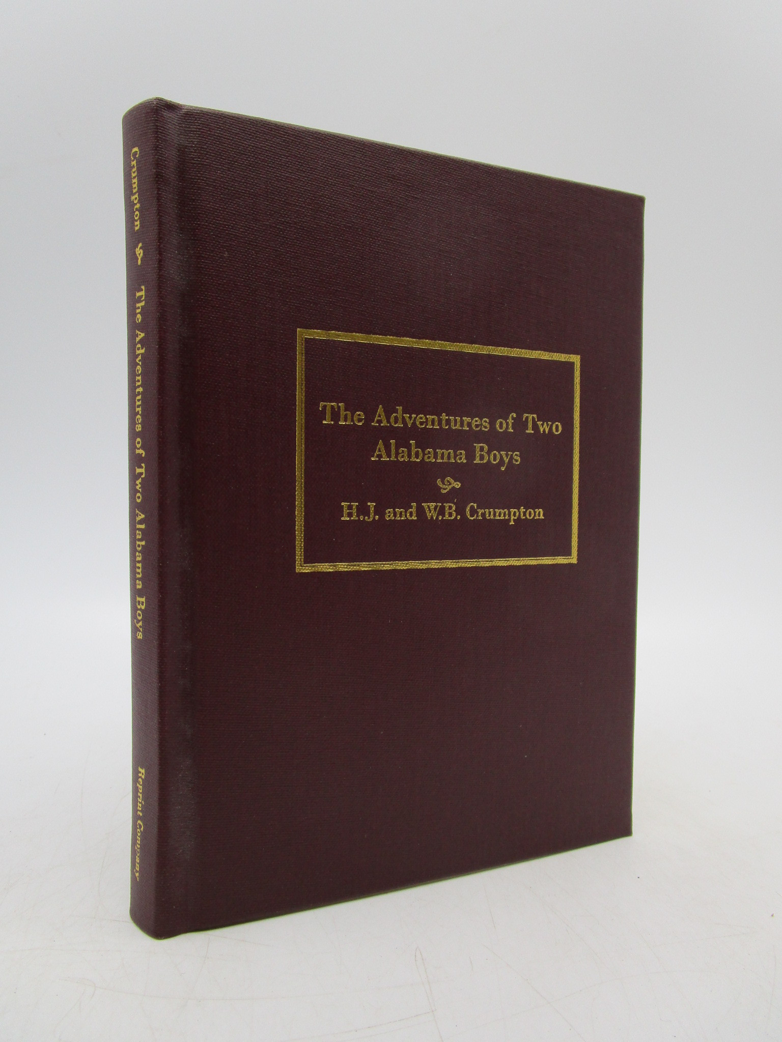 Image for The Adventures of Two Alabama Boys in Three Sections (Reprint)