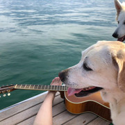 shania-switzerland-lakegeneva-dogsguitarfoot080419-1