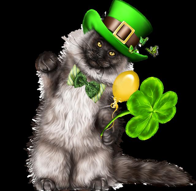 Leprechaun-Cat-With-Beer-04.png