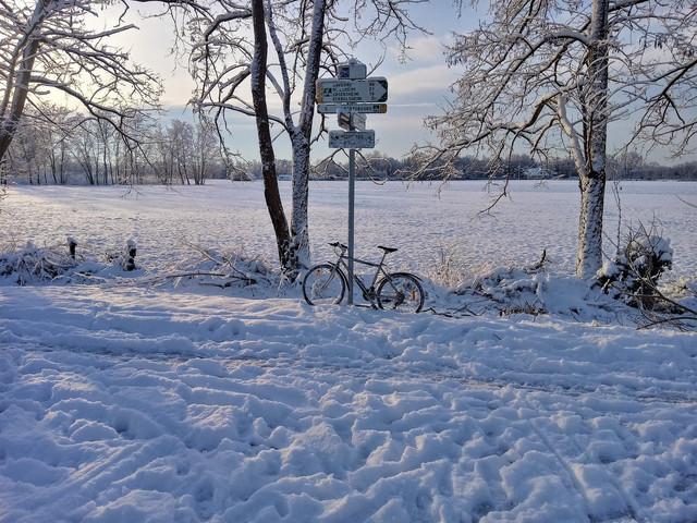 https://i.ibb.co/BnGmg8T/velo-route-neige.jpg