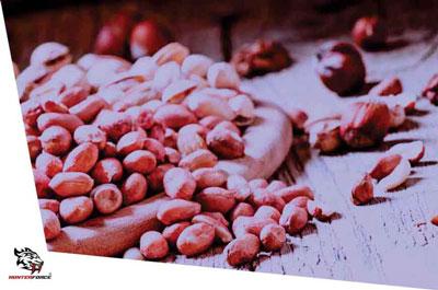 Quebrando os mitos do amendoim, e o conduzindo para seus benefícios.