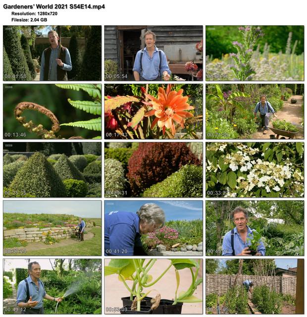 Gardeners-World-2021-S54-E14.jpg