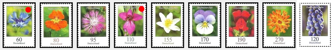 Germany flowers 2019