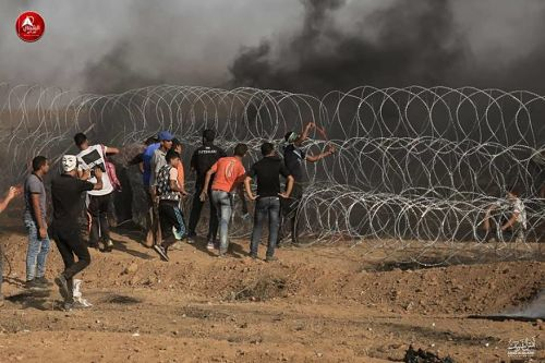 grille gaza opt