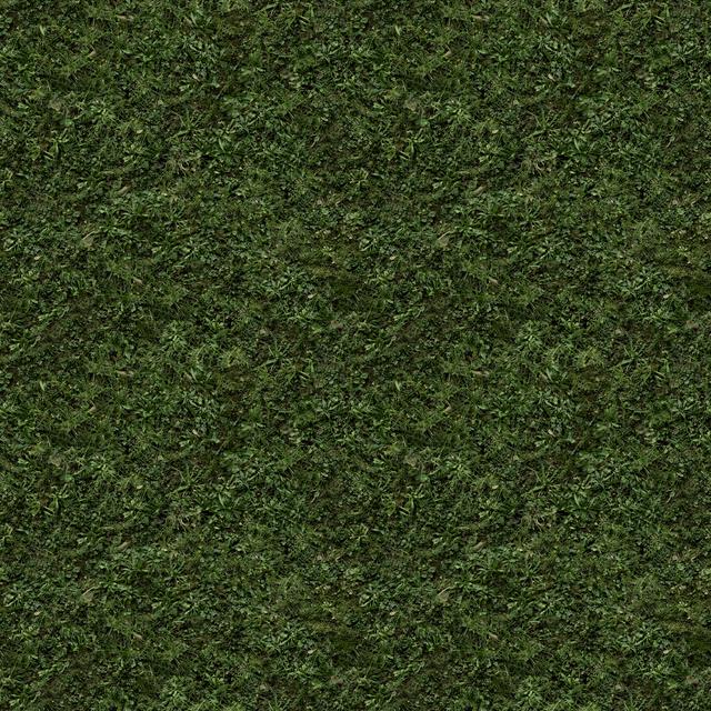 im grass014b