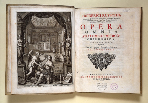 The frontispiece of Opera omnia anatomico-medic by Frederik Ruysch