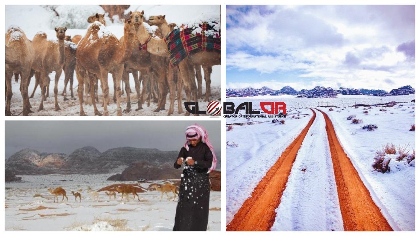 PRVI NAKON 50 GODINA! Pustinje u Saudijskoj Arabiji zabijelile od snijega!