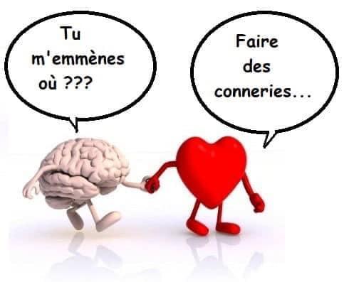 [Jeu] Association d'images - Page 7 Cerveau-coeur