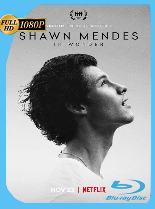 Shawn Mendes: In Wonder (2020) NF WEB-DL [1080p] Subtiulado [GoogleDrive] [zgnrips]