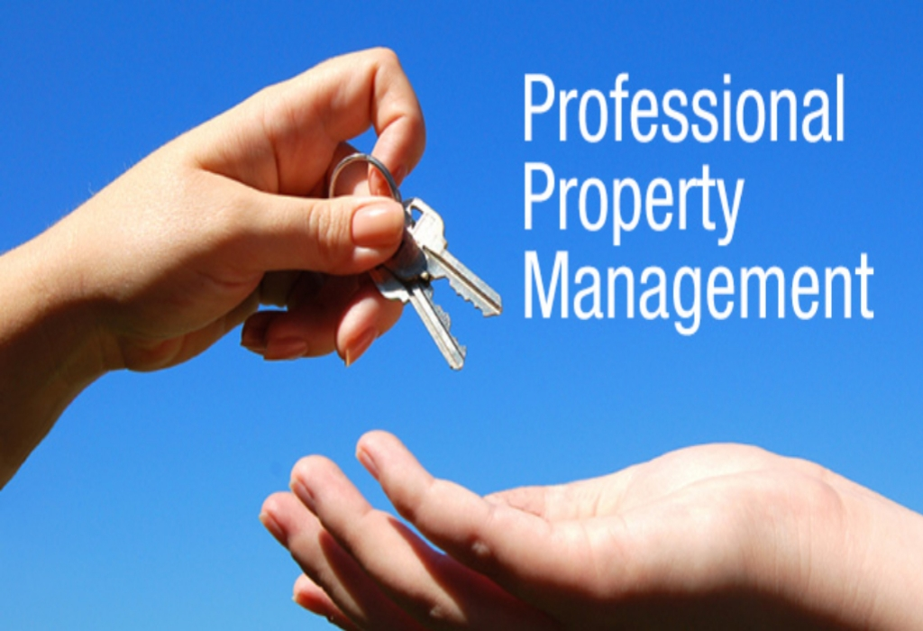 DreamLand Property Agents Management