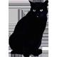 https://i.ibb.co/C0TYrGD/cat-black.png