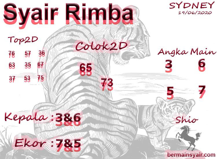 SYAIR-RIMBA-SDY
