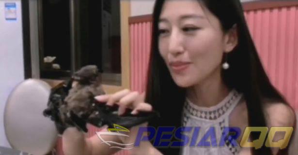 Imbas Virus Korona Food Vlogger Ogah Santap Daging Kelelawar Lagi