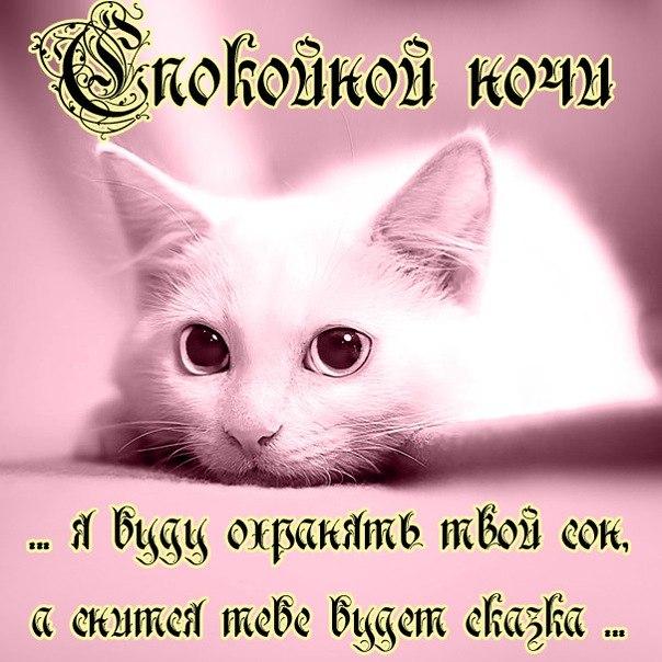 1432213280-kartinki-spokoynoy-nochi-44.jpg