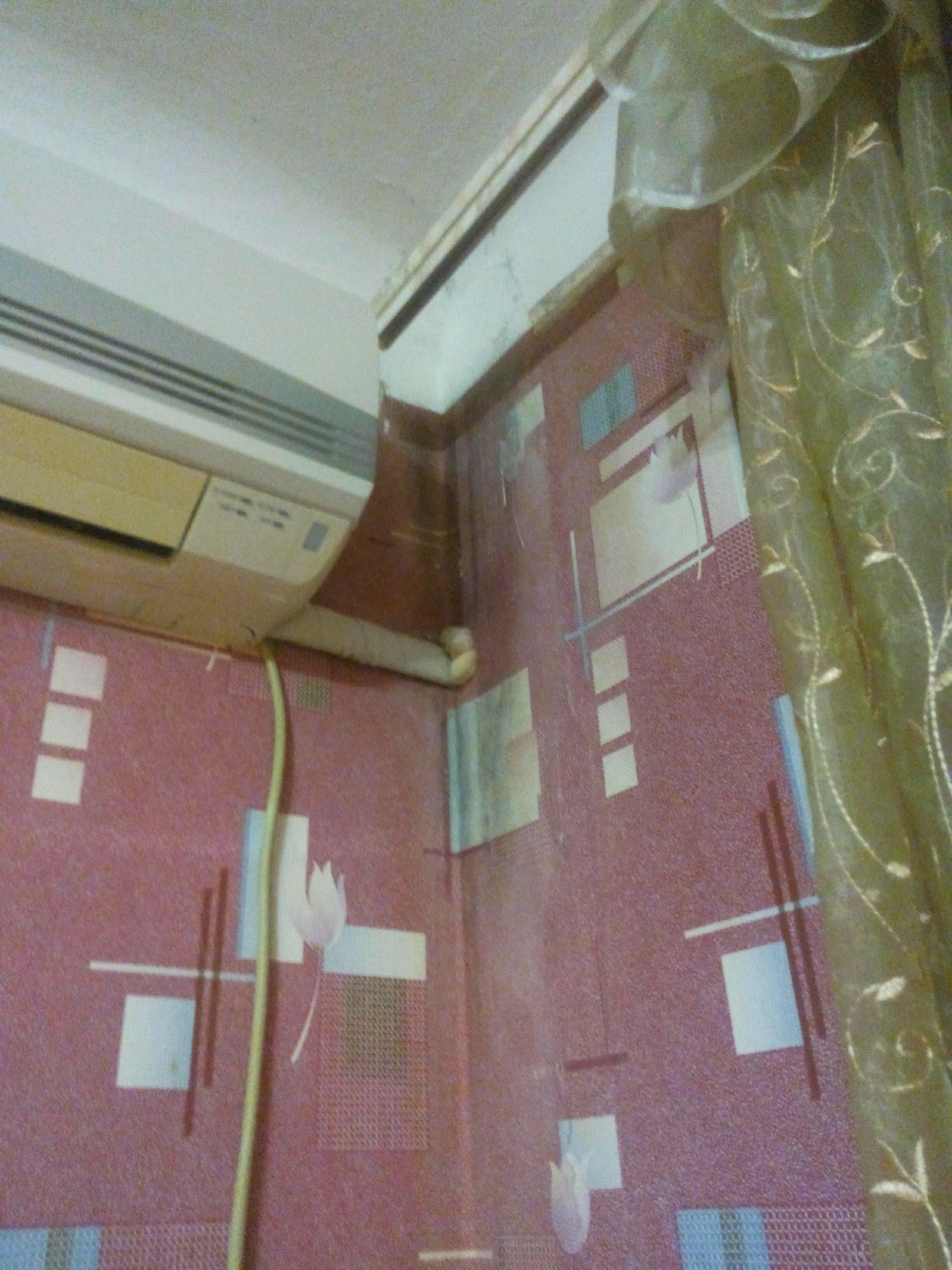 Очаг протяженного грибкового поражения угловой части стены здания