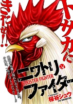 Rooster Fighter 6