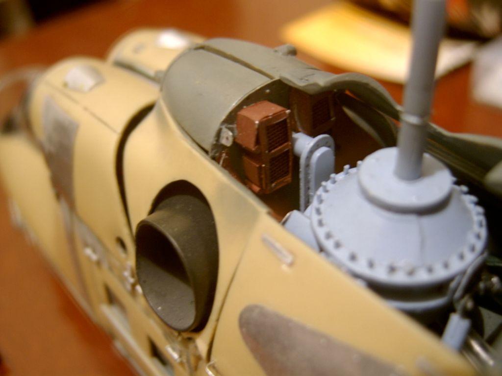 Hind-F1565.jpg