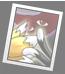 https://i.ibb.co/C99DpJK/Image-yukari-card09c.png