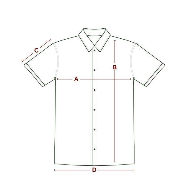 P P Size Diagram SS Shirt