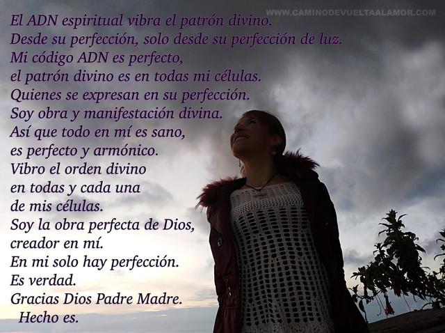 el-adn-espiritual