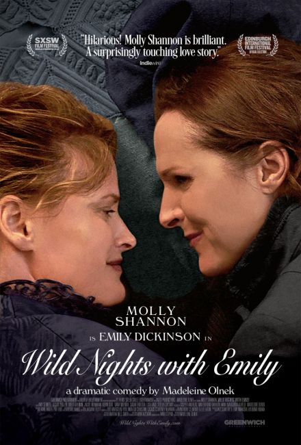 Szalone noce z Emily / Wild Nights with Emily (2019) PL.WEB-DL.XviD-GR4PE / Lektor PL