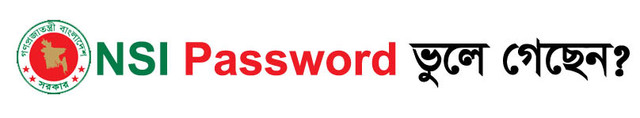 NSI Password Recovery