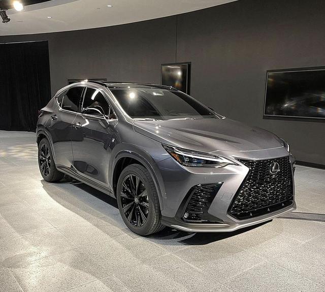 2021 - [Lexus] NX II - Page 3 51-AC5532-58-B8-4-D42-A6-BD-5-FE8-E5-D4-CB22