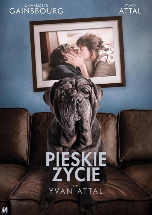 Pieskie życie / My Dog Stupid / Mon chien Stupide (2019) PL.1080p.WEB-DL.x264-FOX / Lektor PL