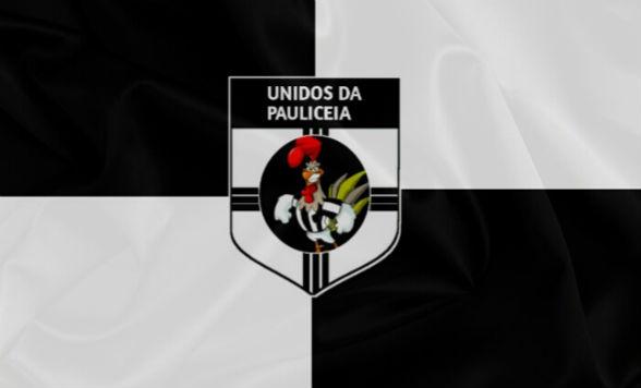 unidos-da-pauliceia