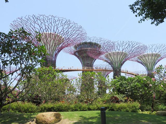 singapore-6.jpg