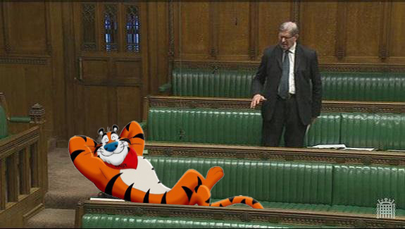 Mogg-the-tiger