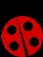 rsz-ladybug-vicki