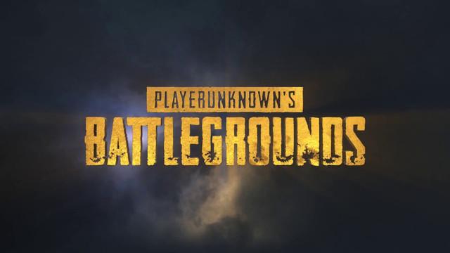 PlayerUnknown's Battlegrounds,PUBG