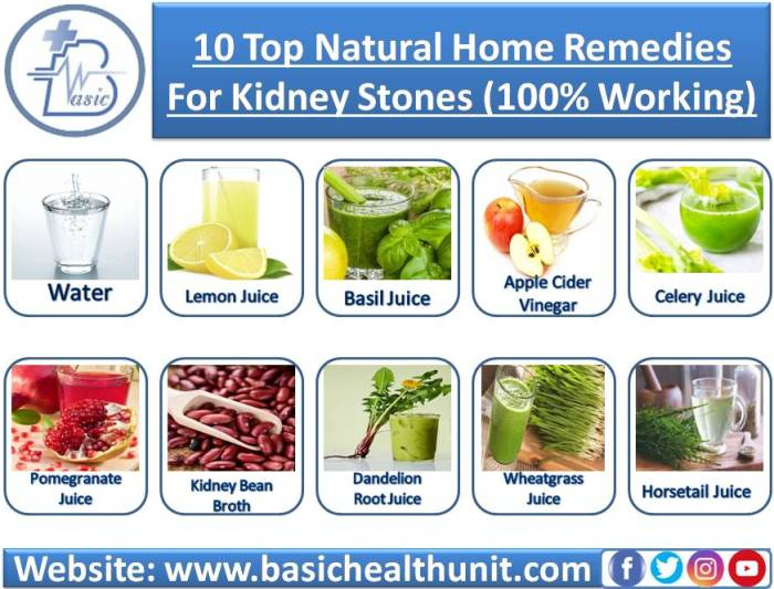 10 Top Natural Home Remedies For Kidneys Stones (100% Working)