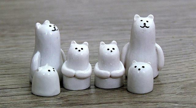 rescue-polar-bears-23