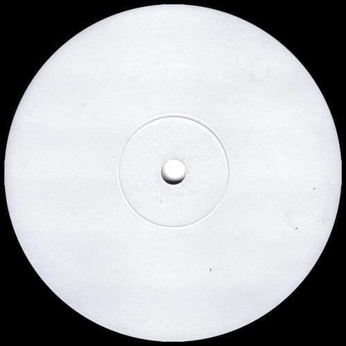Download Secret Squirrel & A.J. Flex - E-Drop / Come Rudebwoy mp3