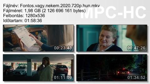 Fontos-vagy-nekem-2020-720p-hun-mkv.jpg