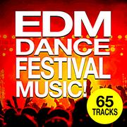 EDM Dance Festival Music (2019) [mp3-320kbps]