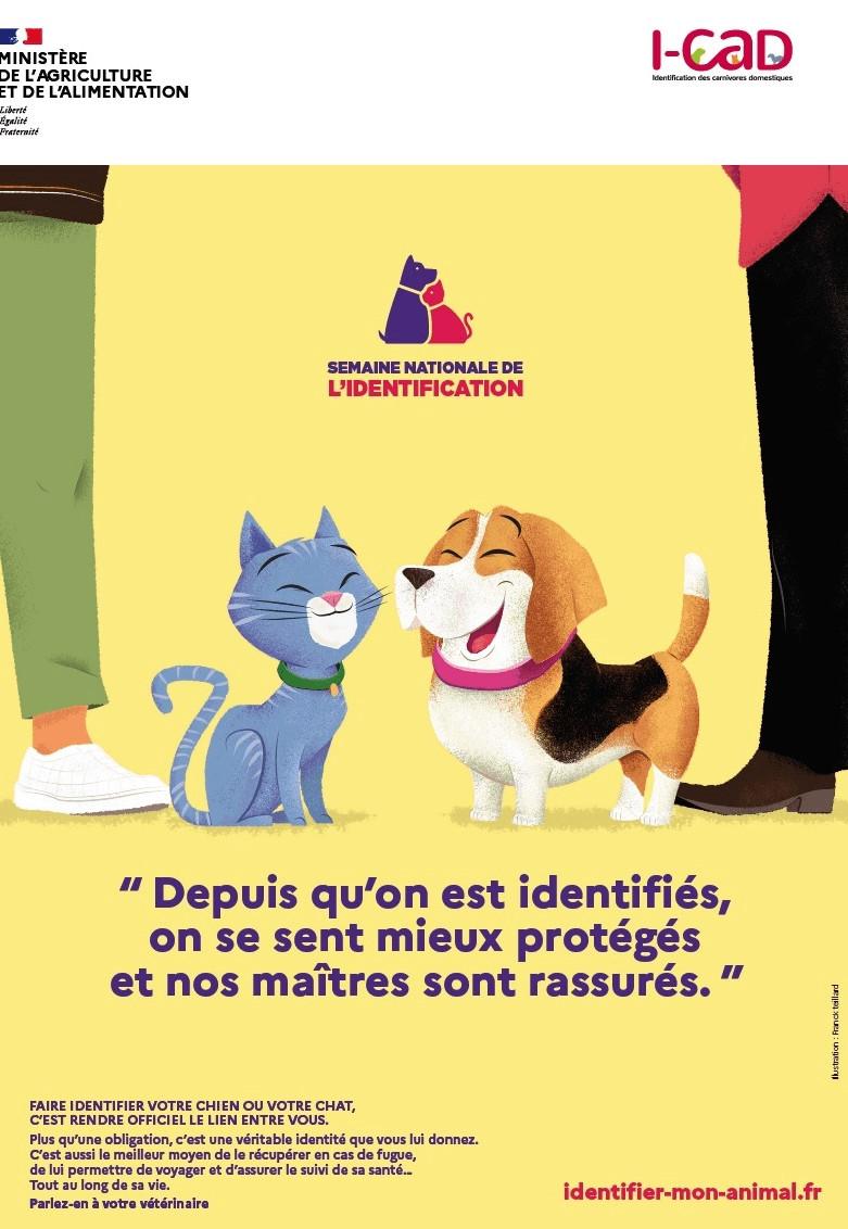 Semaine Nationale de l'identification des chiens et chats