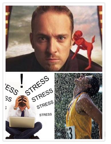 "stress"" border=""0"