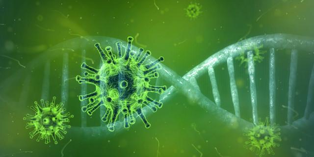 coronavirus-4833754